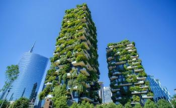 What are the Positive Human Effects of Biophilic Urban Planning?