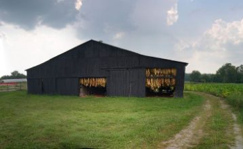 Case Study: Emulating Tobacco Barn Charm with Modern Building Materials