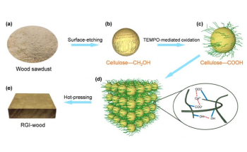 Researchers Develop High-Performance Sustainable Regenerated Isotropic Wood