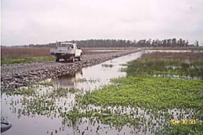 Ecoflex E Pave through swamp for Energy Australia Project